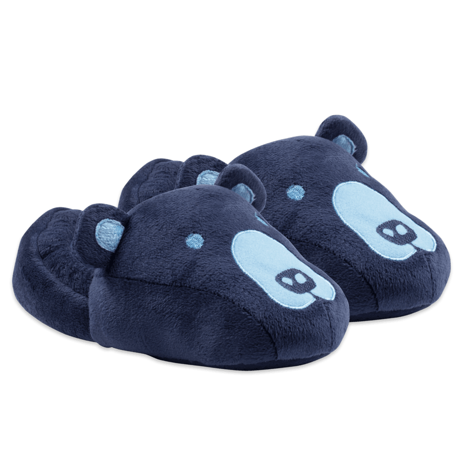 Kids Bear Slippers